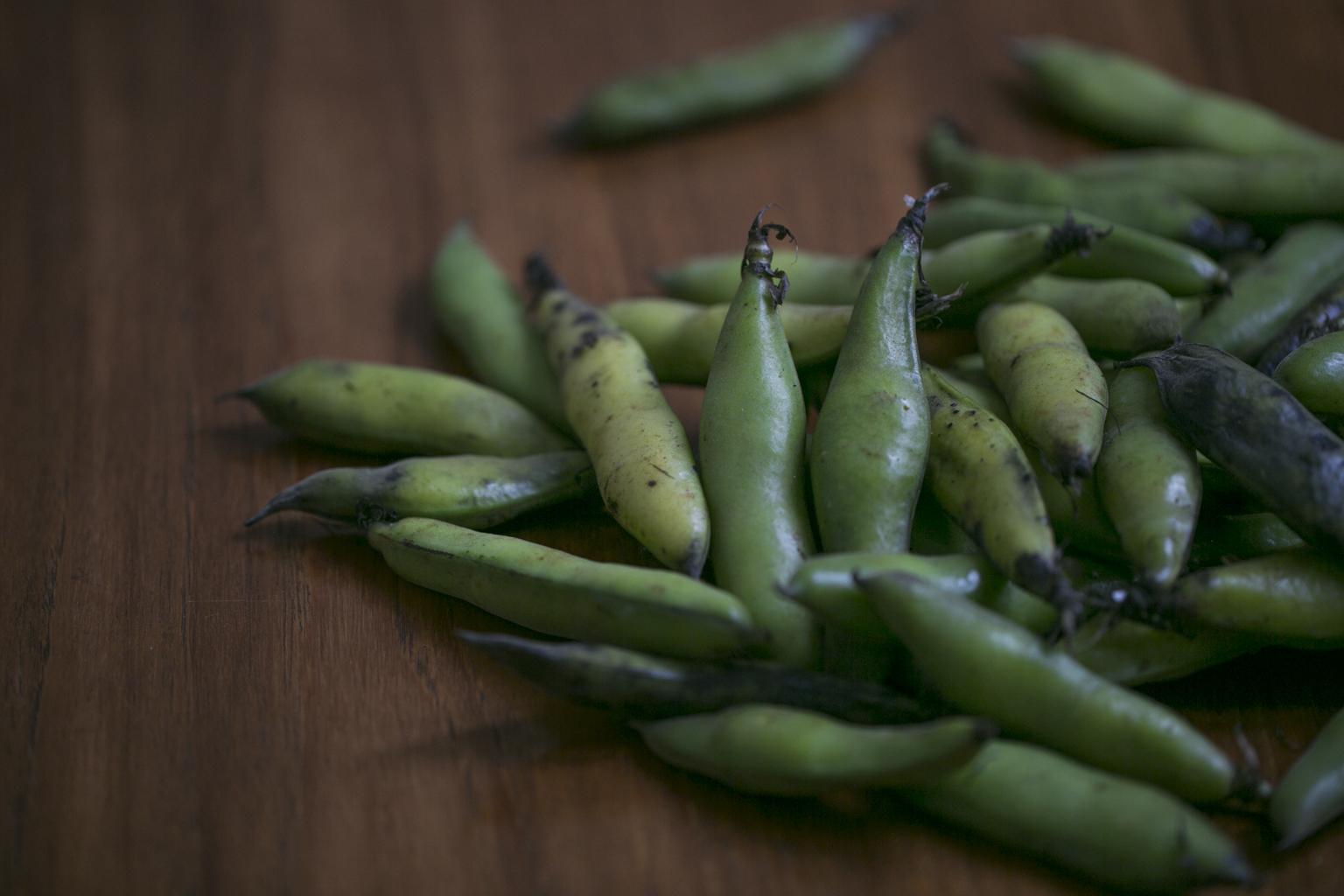 Blair Richardson's Fava Bean Dip and Masienda Crackers