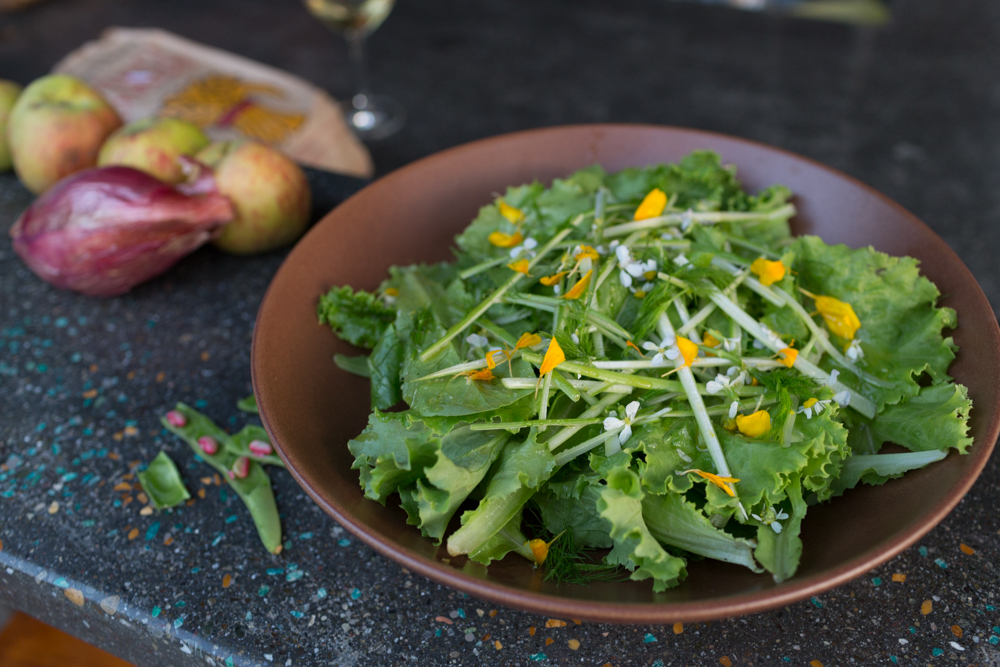 Martha Stoumen's Green Salad with Verjus Vinaigrette